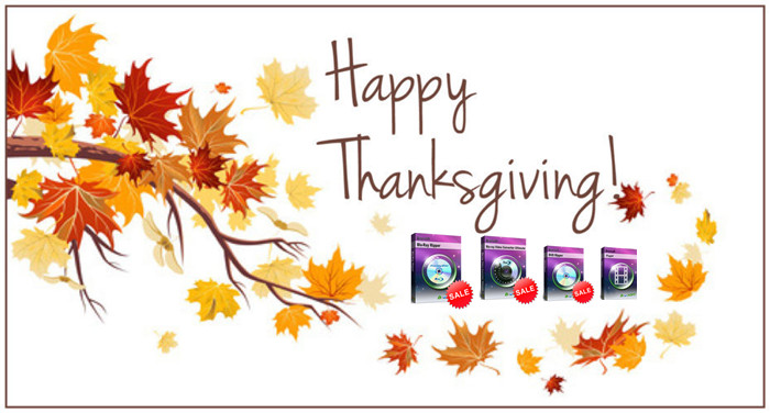 get-20-coupon-code-on-brorsoft-thanksgiving-promotion